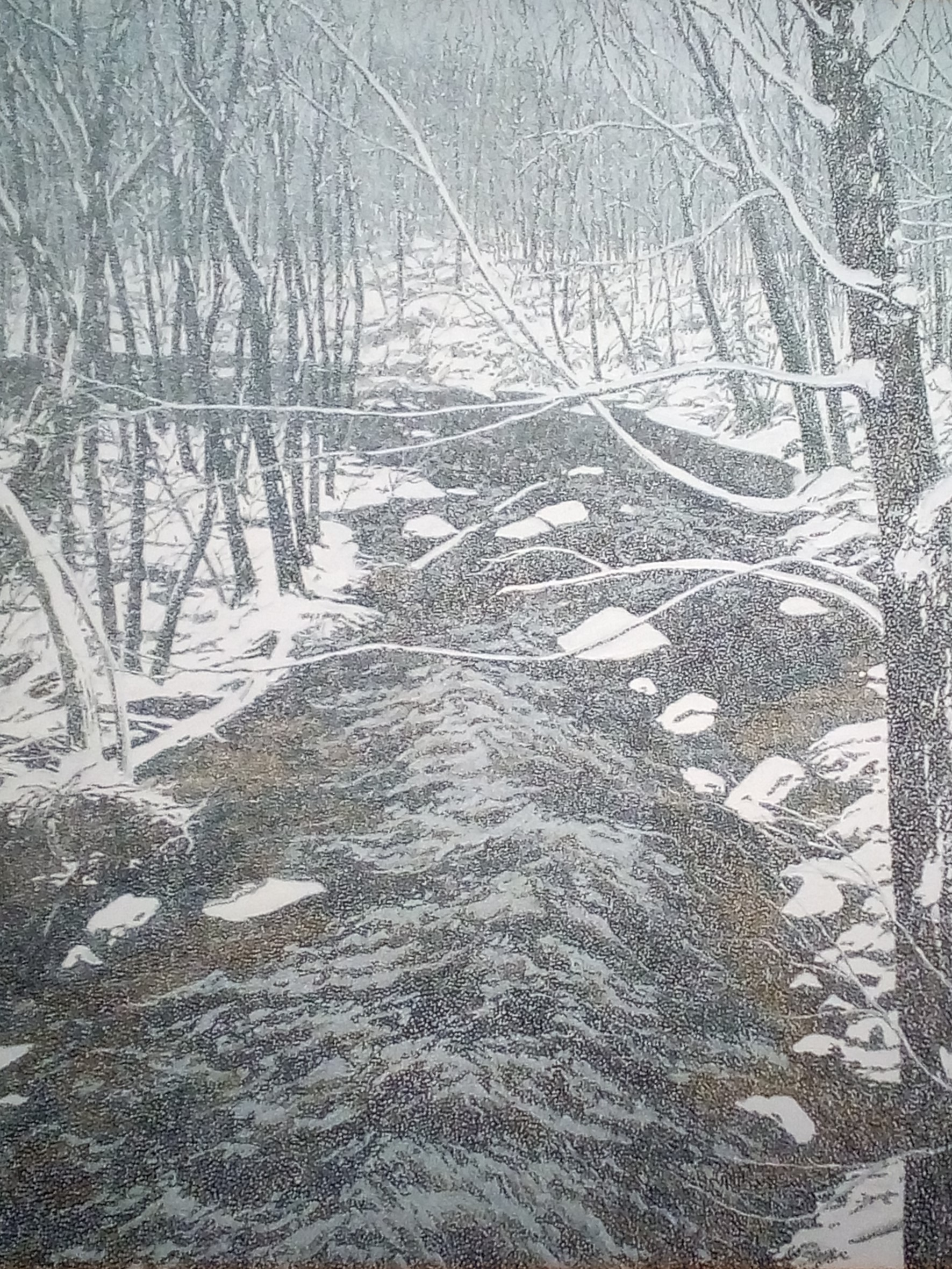 Neil Welliver SNOW ON ALDEN BROOK